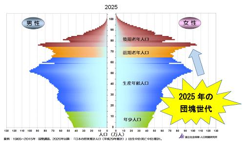 2025年の人口ピラミッド